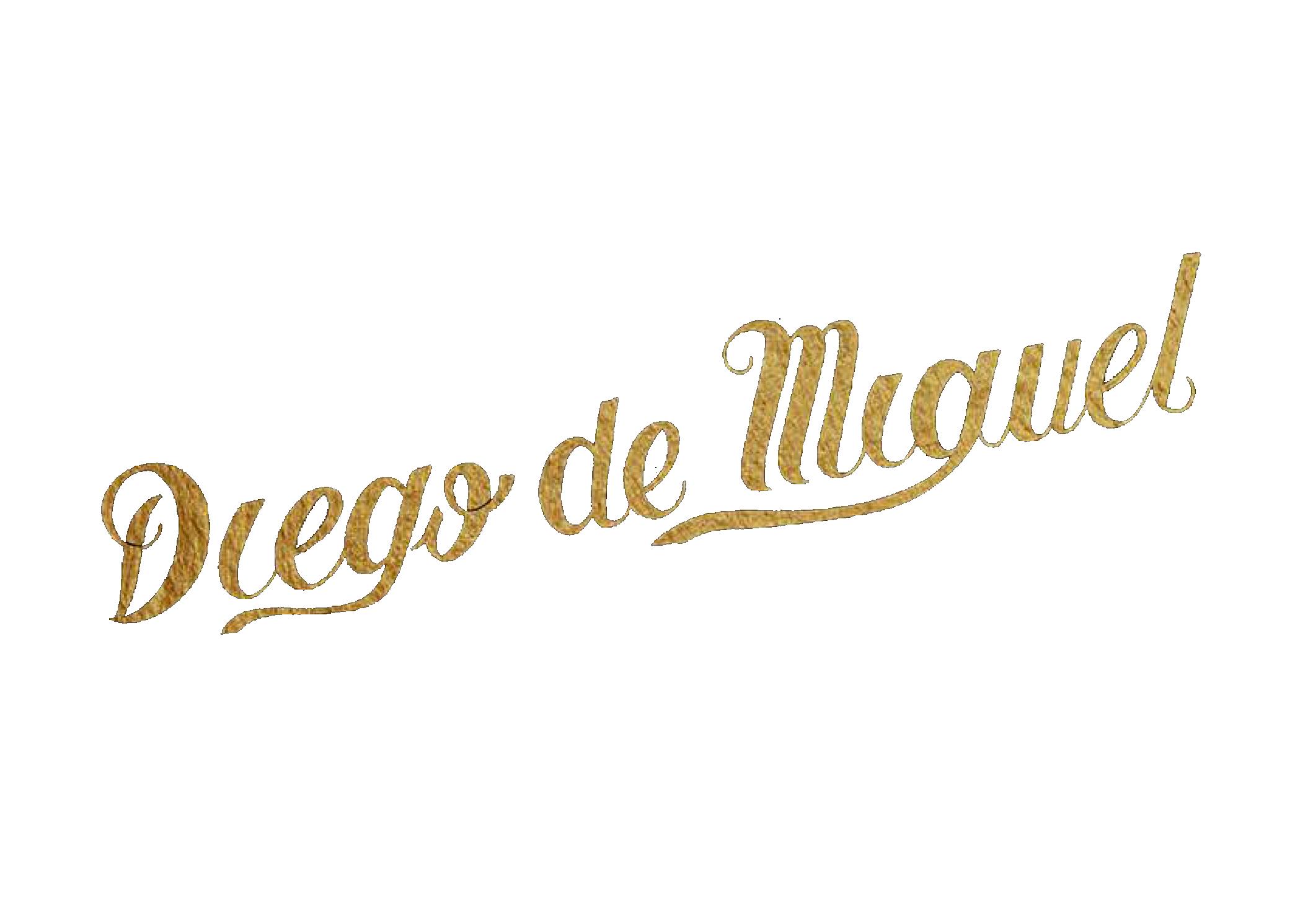 Diego de Miguel